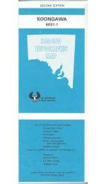 Koongawa Topographic Map - 6031-1